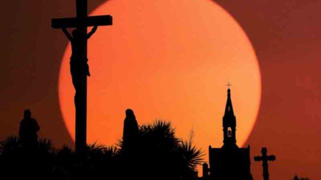 Ni ovejas ni rebaño. La rebelión de los católicos identitarios. Adriano Errigel